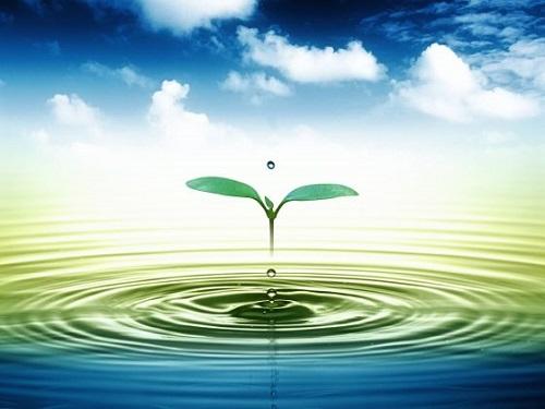 nguồn nước bị ô nhiễm